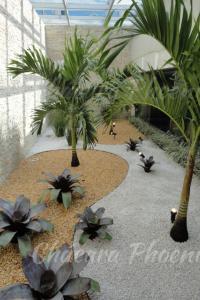 Bromélias e palmeiras veitias Chácara Phoenix paisagismo Milcir Filho