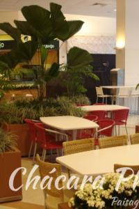 Praça de alimentação Downtown Chácara Phoenix paisagismo Milcir Filho